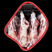 لاشه بره گوسفند داخلی ممتاز زی خوراک